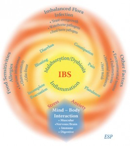 IBS Treatment Fact or Fiction symptoms chart