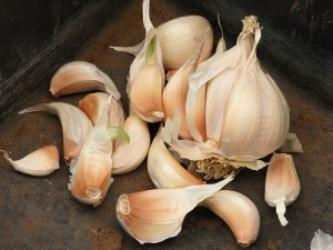 Home Remedies for How to Treat Ringworm garlic