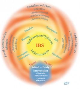 IBS Treatment Fact or Fiction symptoms chart
