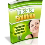 The_Scar_Solution cover