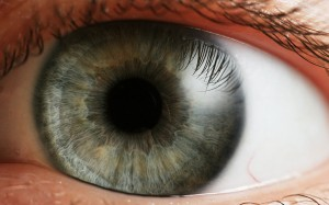 What_is_the_Most_Common_Eye_Floaters_Treatment2